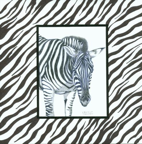 Zebra by Design