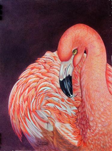 Pink Elegance by Sheila Bledsoe