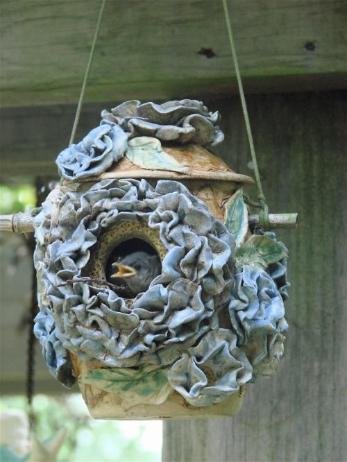 Birdhouse by Sheila Watson Coutin