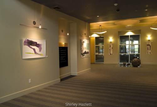 Gallery 2237 (installation view)