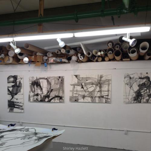 Hazlett Studio Installation