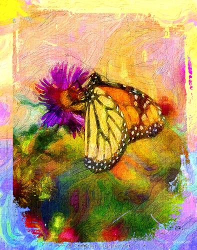 Arty Monarch
