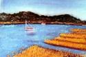Cape Cod Marsh (thumbnail)