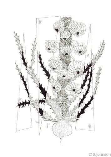 PLANT PROFILE