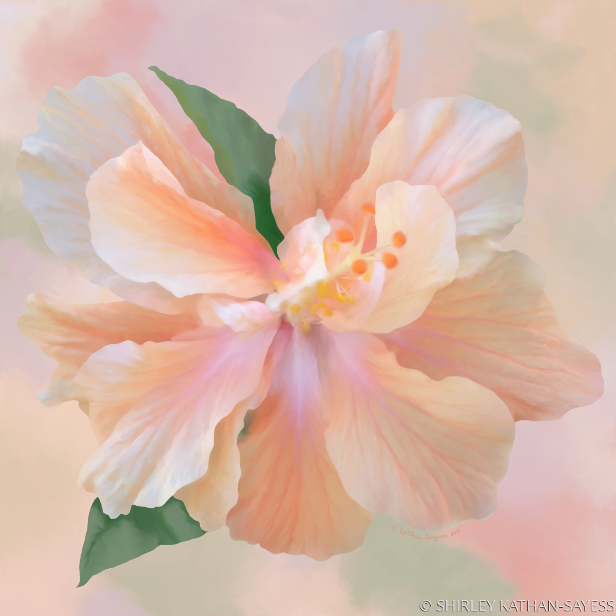 PEACH HIBISCUS (large view)