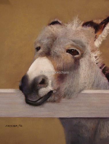 Donkey Ho-ti