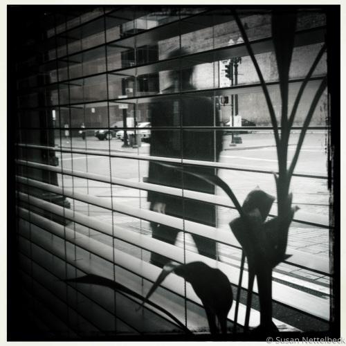Man from window walking