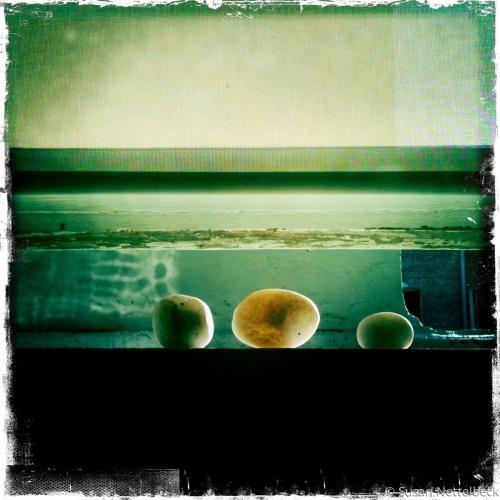 Rocks in Window