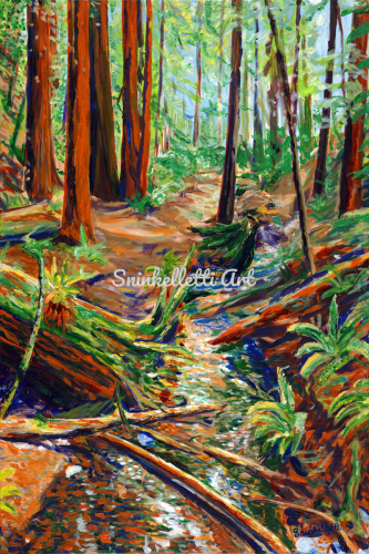 Muir Woods by Artist Nick Sninkelletti - Official Site
