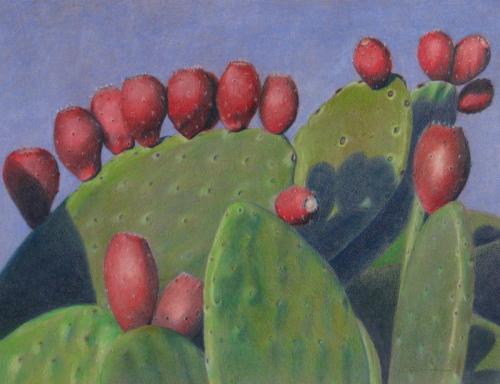 Prickly Pear Cactus #2