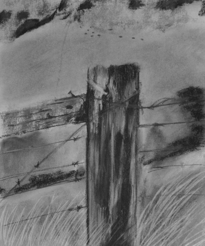 Fence Post,#4