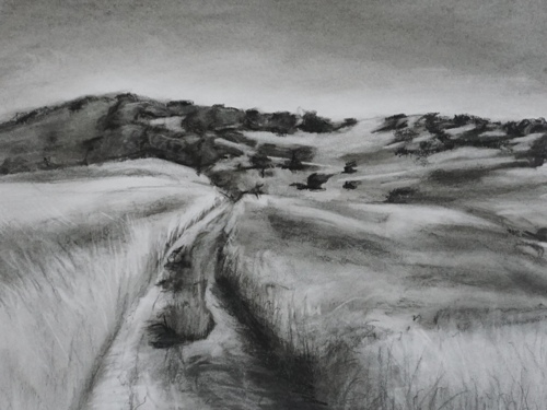 Path on Lime ridge
