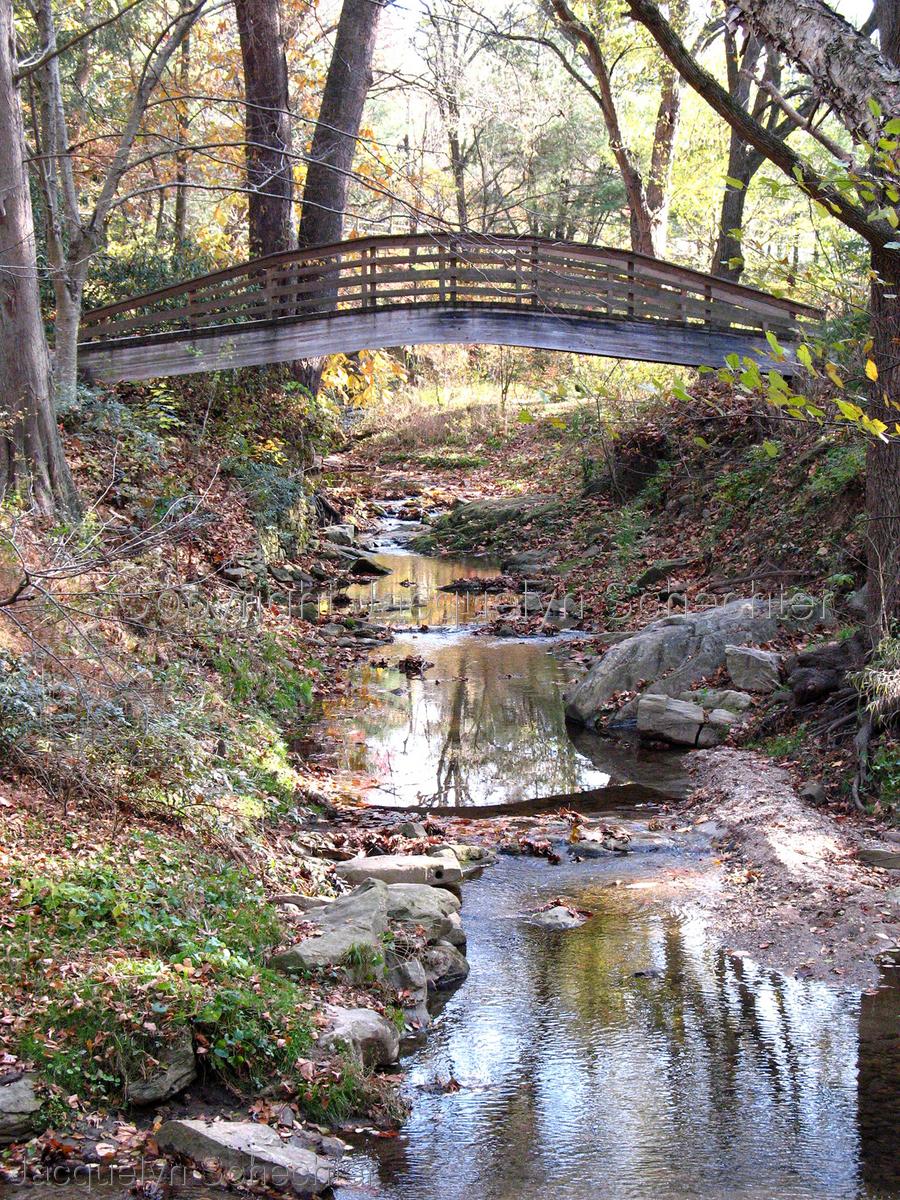 Botanical Garden Bridge (large view)