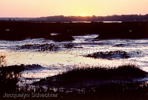 Marsh Sunset (large view)