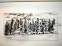Idaho book a barn under the trees (thumbnail)