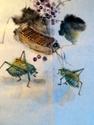 crickets (thumbnail)
