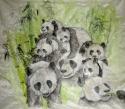 so many panda together (thumbnail)