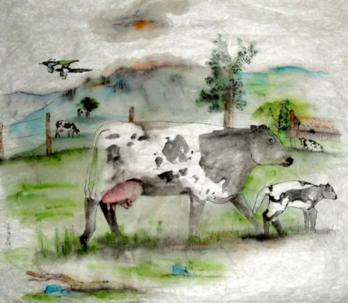 bovine beauties