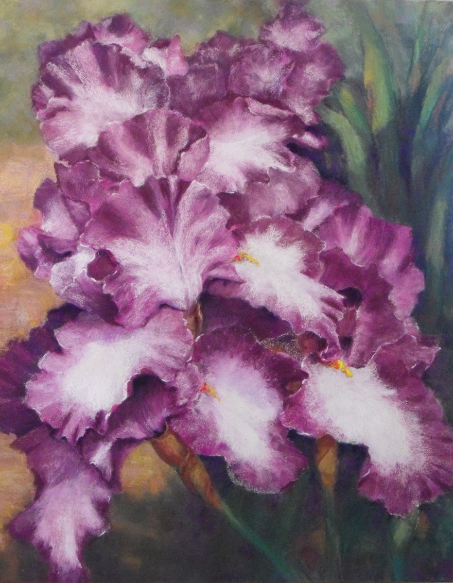 Purple Profusion by Shirley Anderson (large view)