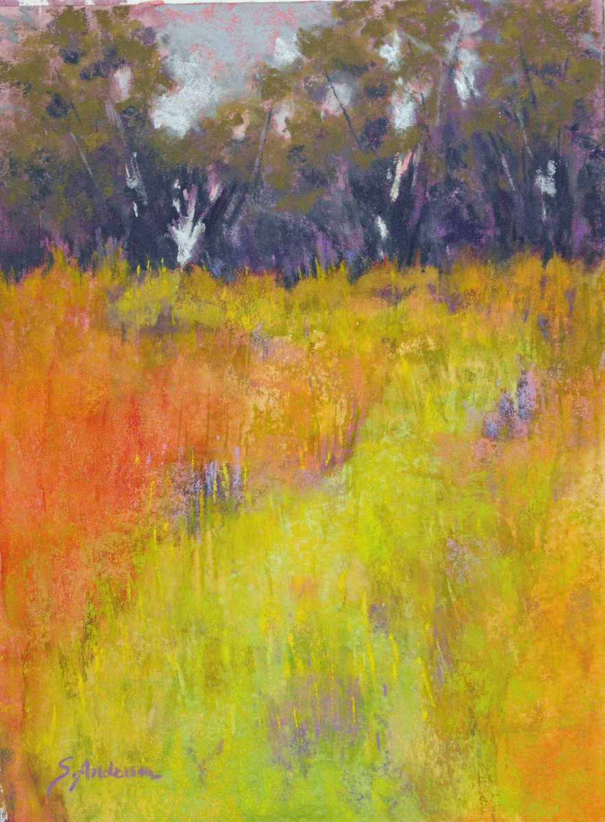 Sunlight and Shadow by Shirley Anderson (large view)