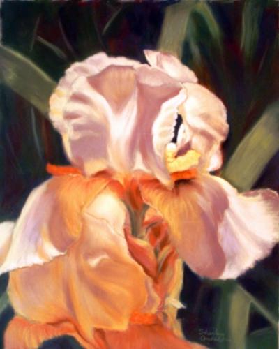 Yellow Irisies