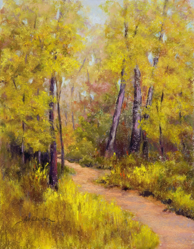 Ouachita Fall by Shirley Anderson