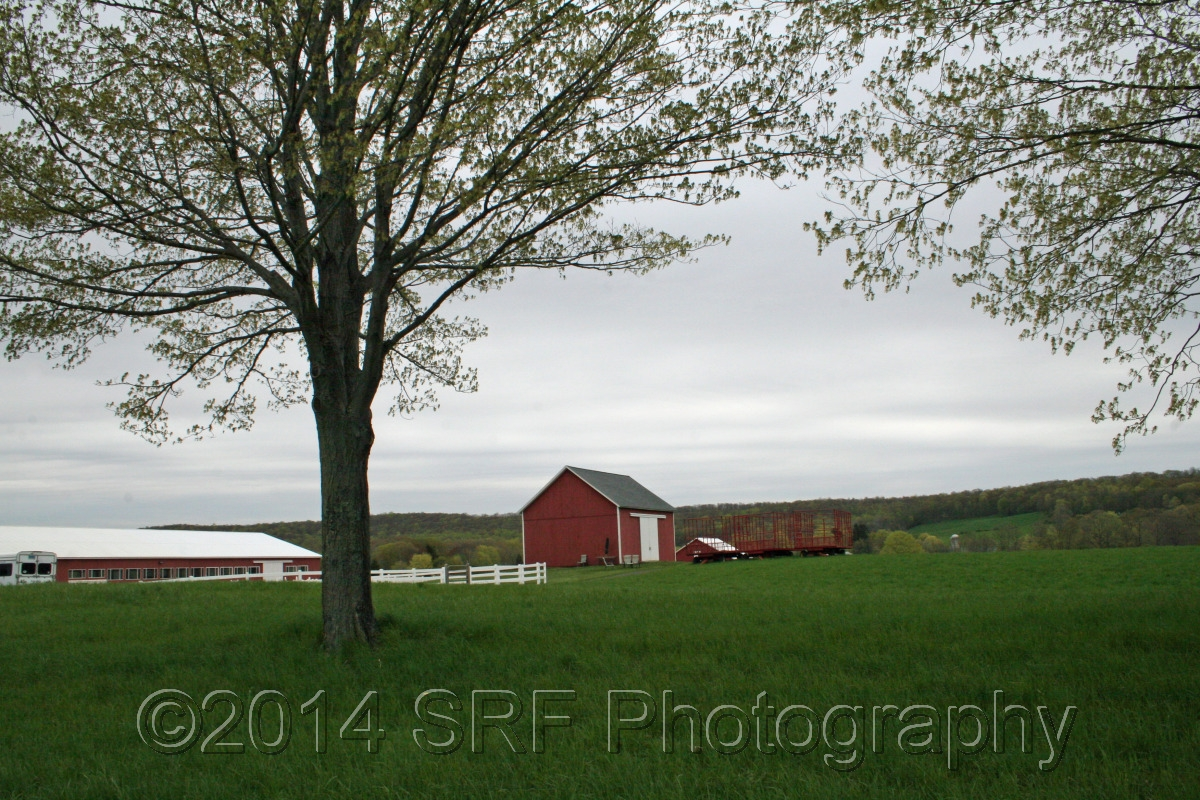 Spring Farm (large view)