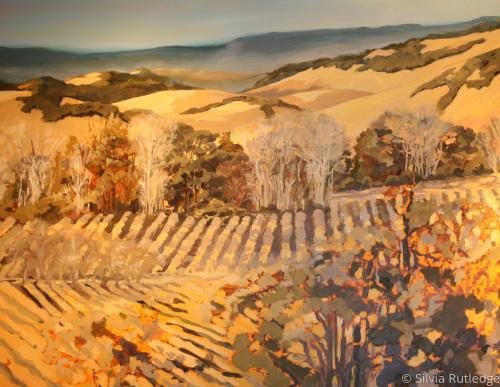 Winter Vineyard IV by Silvia Rutledge