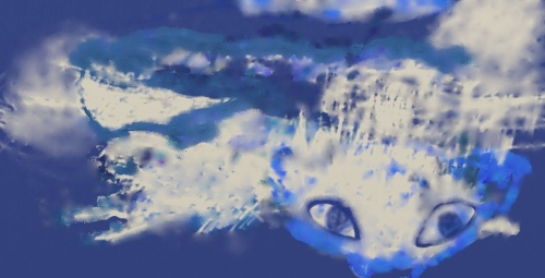 Cat Lagoon