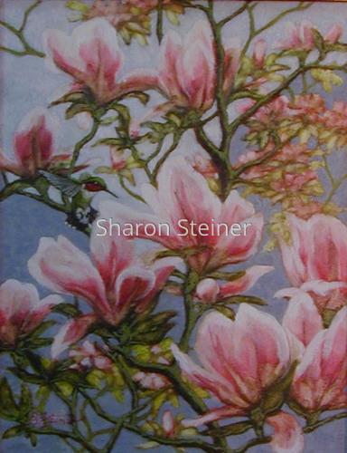 Magnolia Hummer