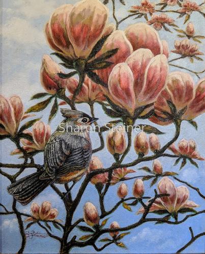 Magnolia Titmouse