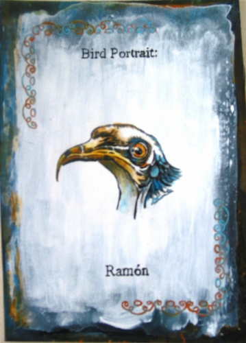 Bird protrait, Ramon