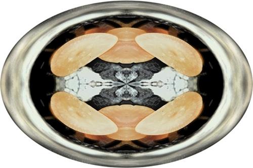 Circle Fungus