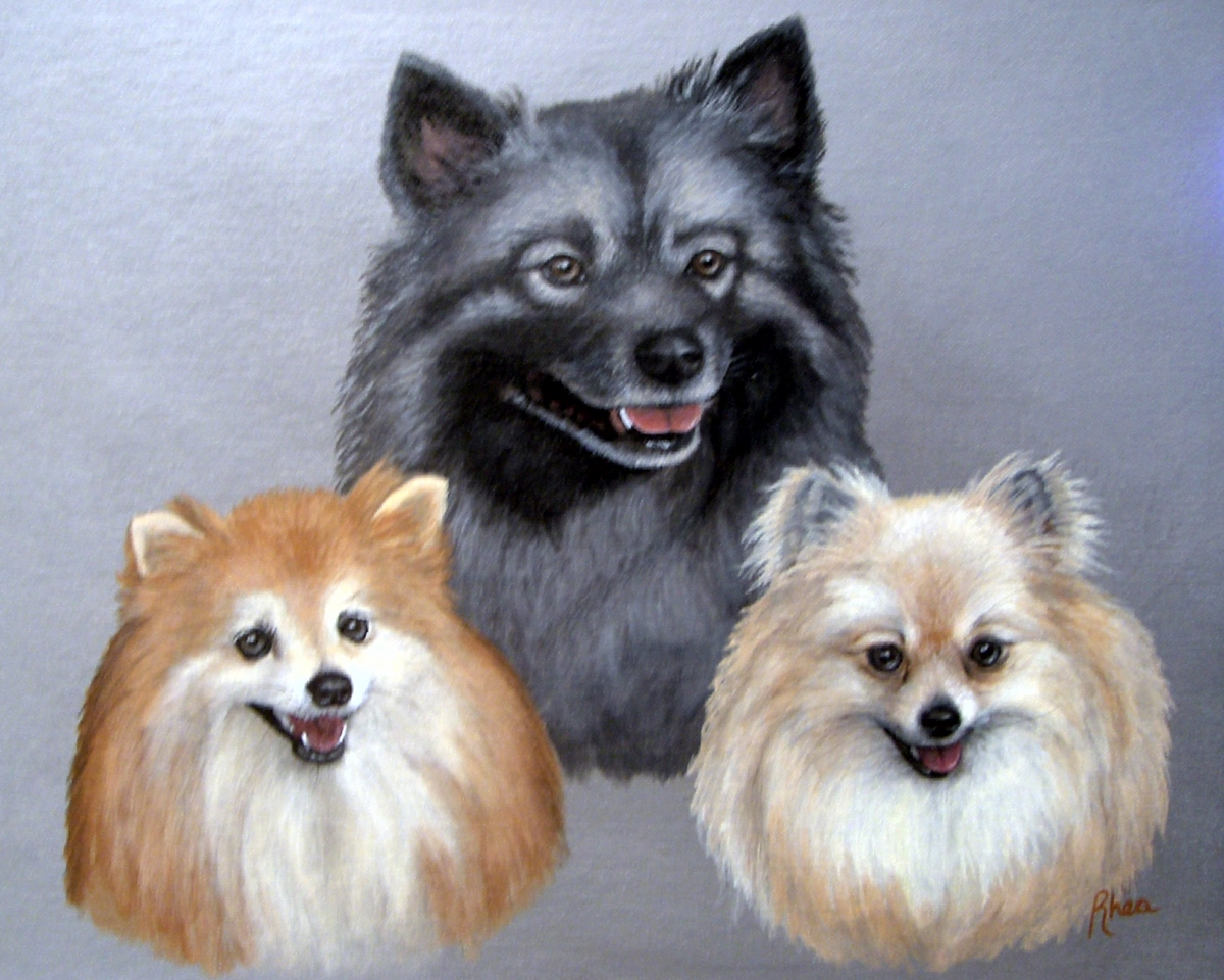 Jude, Gracie, and Riki (large view)