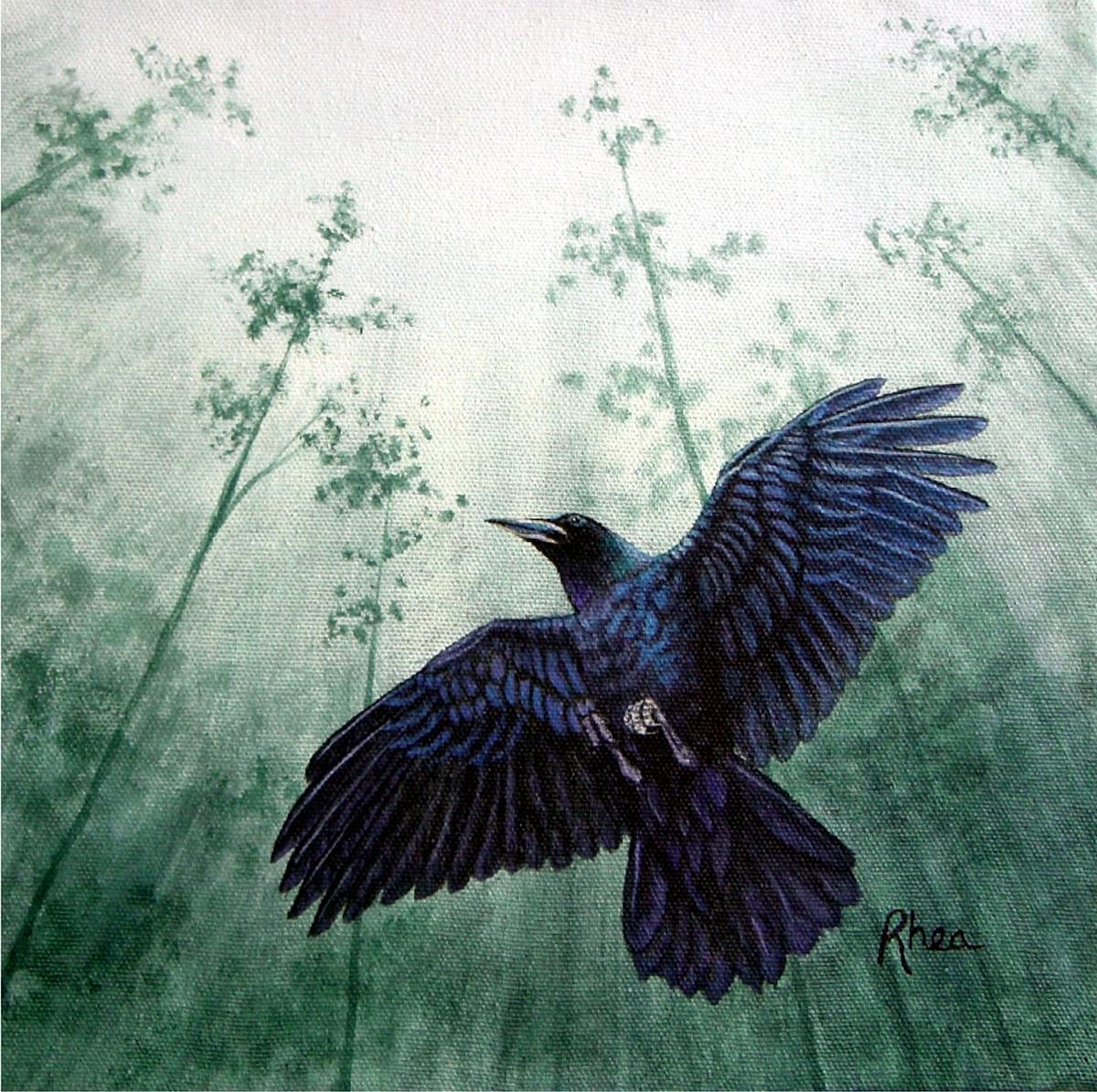 Raven (large view)
