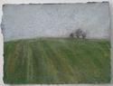 Oxfordshire Field #4