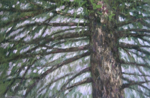 Painting-Pastels-Spruce