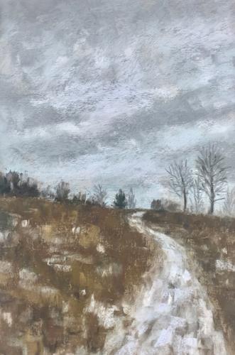 Winter Path, Gwynedd Preserve