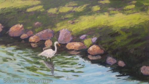 Egret in Edgemont Park