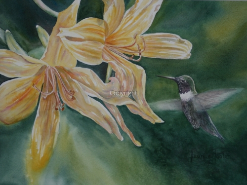 Hummingbird and Yellow Lilies