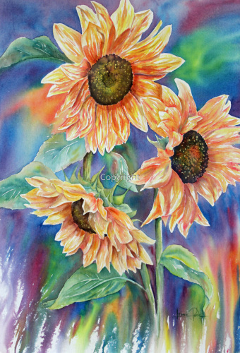 Colourful Sunflowers
