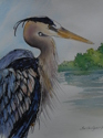 A Blue Heron (thumbnail)