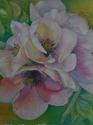 A Spring Blossom (thumbnail)