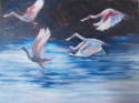 Spoonbills In Flight (thumbnail)