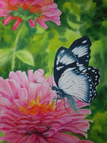Watercolor Floral and Butterfly  (large view)