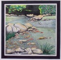 Shallow River (thumbnail)