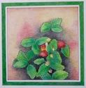 Strawberry Plant (thumbnail)