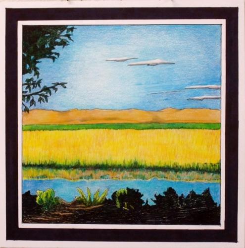 Sunlit Field and Stream by Susanjohnson-artoregon