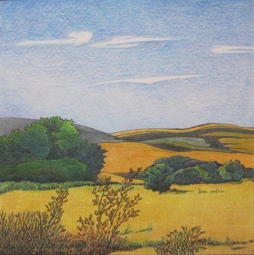 Rolling Farmlands