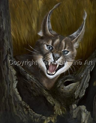 Lynx Surprise